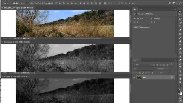 Photoshopワークショップ・モノクロ写真にする方法。